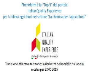 Italian-Quality-Experience-IT